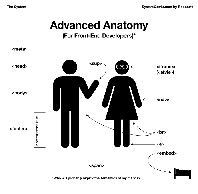 The System 727: Advanced Anatomy for Front-End Developers